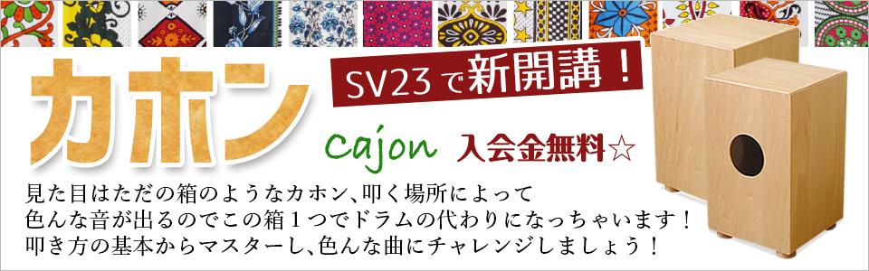 Cajón_banner